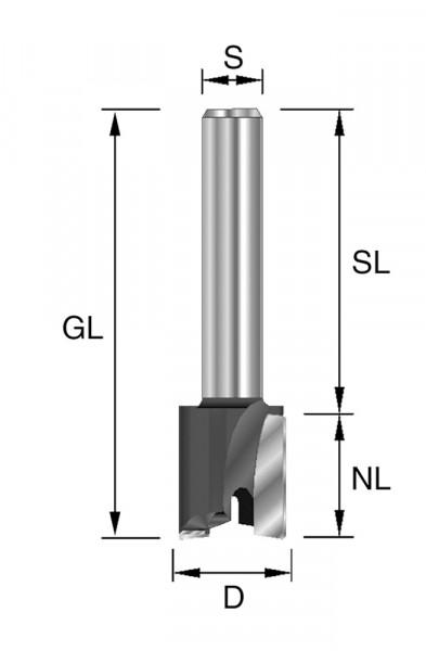 HW-Planfräser D=19mm NL=12mm S=12x40mm